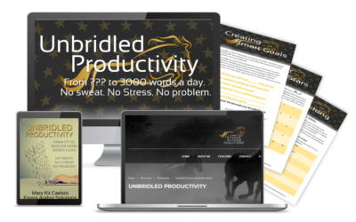 Unbridled Productivity Course Mockup
